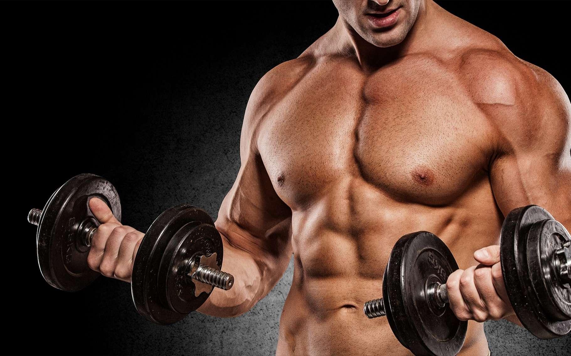 Blog généraliste : qu'est-ce qu'une déchirure musculaire ?